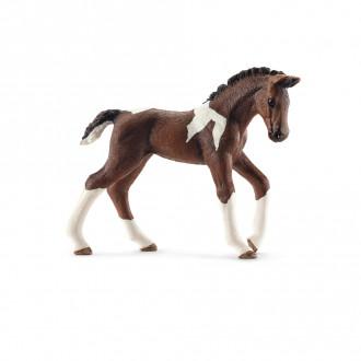 Horse Club - Trakehner foal (7cm Tall)