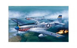 1/72 P-51D Mustang