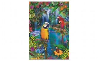 Bird Tropical Land (1x500pc)